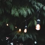 Can Solar Lights Stay Out In Winter?